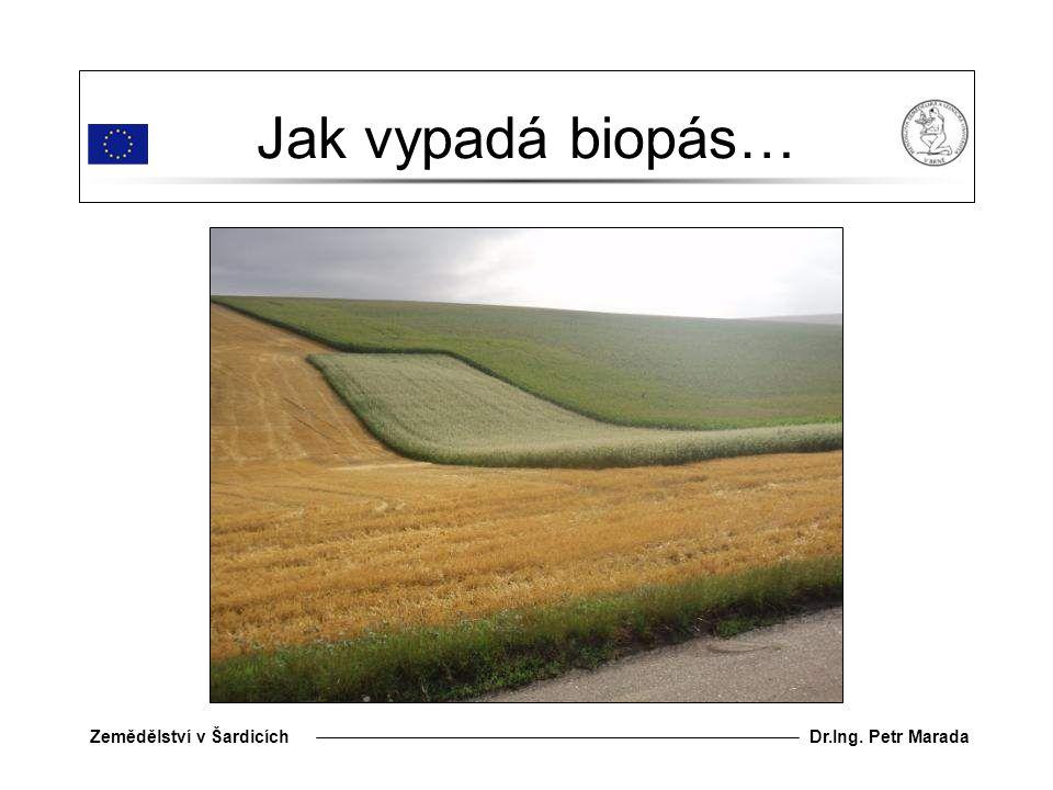 Dr.Ing. Petr MaradaZemědělství v Šardicích Jak vypadá biopás…