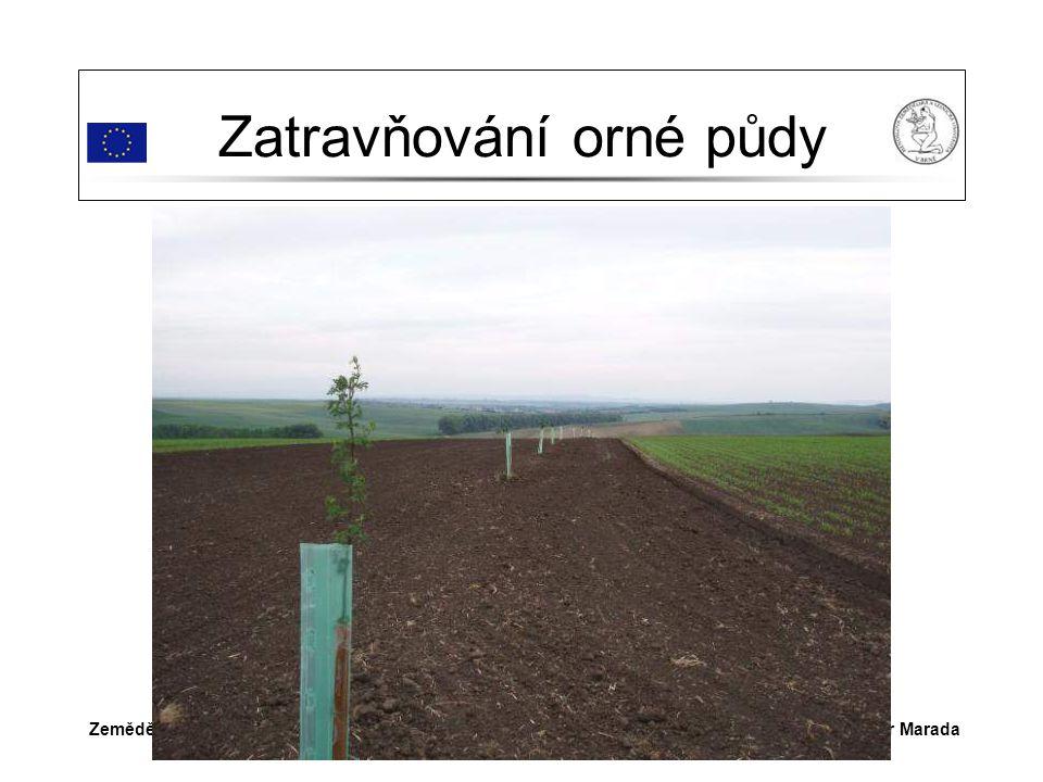Dr.Ing. Petr MaradaZemědělství v Šardicích Zatravňování orné půdy