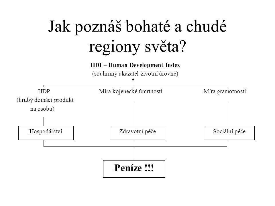 Jak poznáš bohaté a chudé regiony světa.