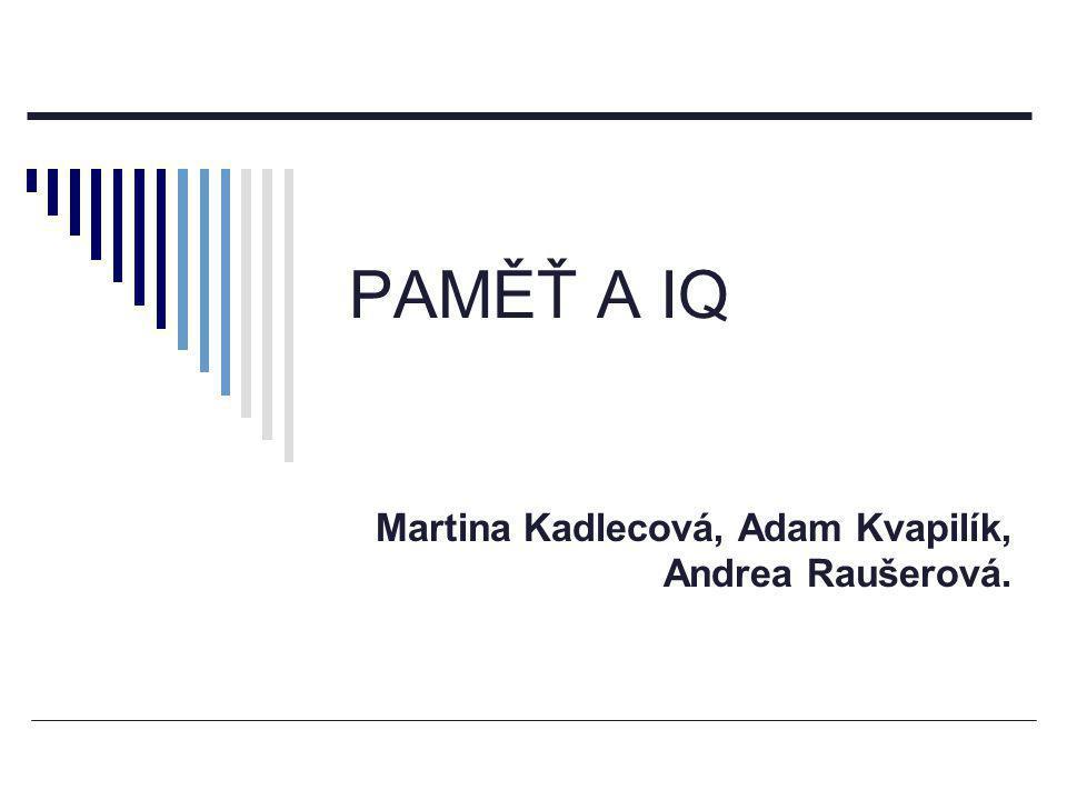 PAMĚŤ A IQ Martina Kadlecová, Adam Kvapilík, Andrea Raušerová.