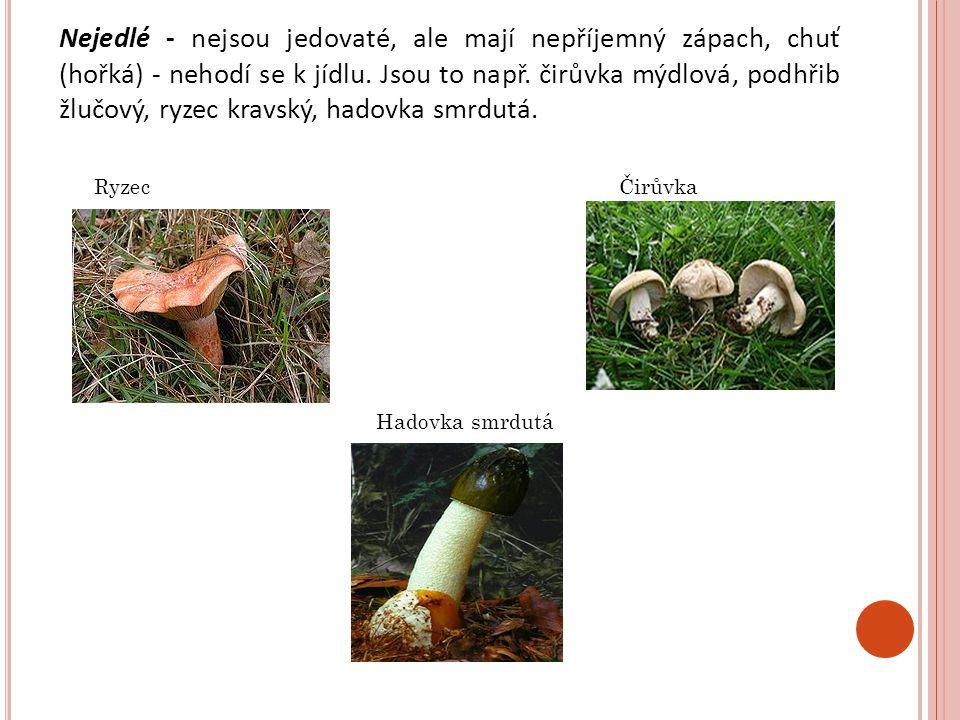 Ryzec Čirůvka Hadovka smrdutá Nejedlé - nejsou jedovaté, ale mají nepříjemný zápach, chuť (hořká) - nehodí se k jídlu. Jsou to např. čirůvka mýdlová,