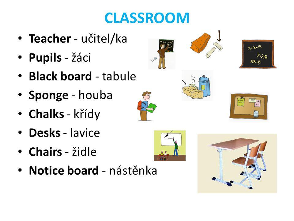 CLASSROOM Teacher - učitel/ka Pupils - žáci Black board - tabule Sponge - houba Chalks - křídy Desks - lavice Chairs - židle Notice board - nástěnka