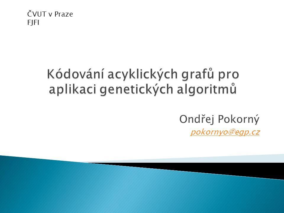 Ondřej Pokorný pokornyo@egp.cz ČVUT v Praze FJFI