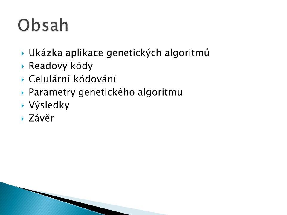  Ukázka aplikace genetických algoritmů  Readovy kódy  Celulární kódování  Parametry genetického algoritmu  Výsledky  Závěr