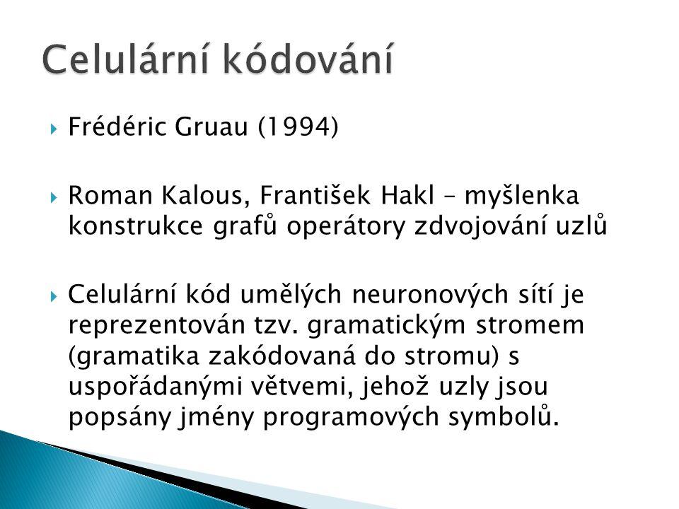  Frédéric Gruau (1994)  Roman Kalous, František Hakl – myšlenka konstrukce grafů operátory zdvojování uzlů  Celulární kód umělých neuronových sítí je reprezentován tzv.