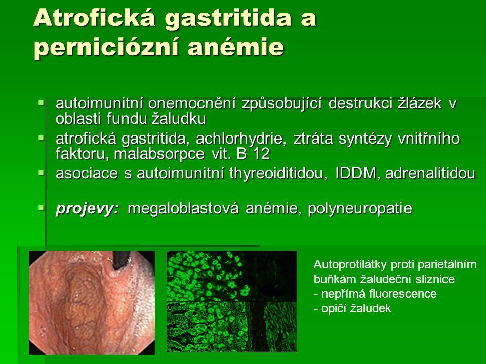 Atrofická gastritida a perniciózní anémie  autoimunitní onemocnění způsobující destrukci žlázek v oblasti fundu žaludku  atrofická gastritida, achlo