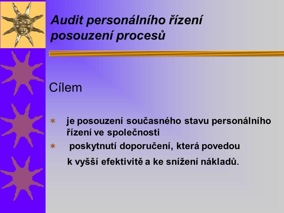 Audit personálního řízení posouzení procesů Cílem  je posouzení současného stavu personálního řízení ve společnosti  poskytnutí doporučení, která povedou k vyšší efektivitě a ke snížení nákladů.