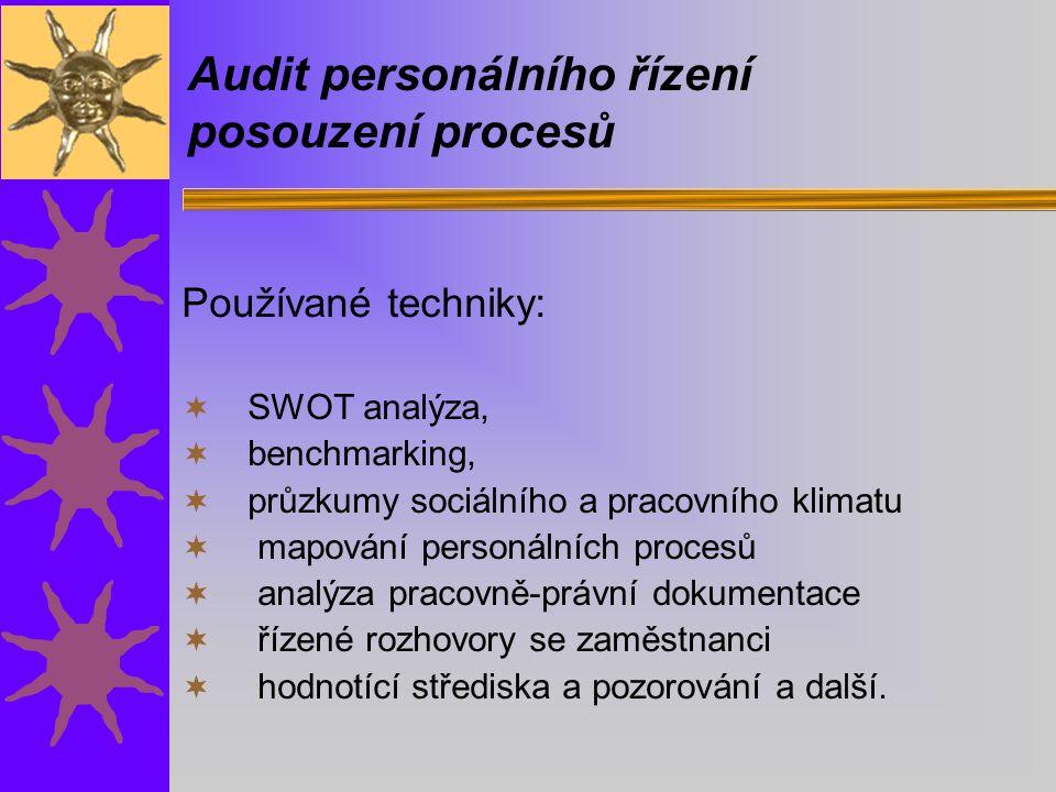 Audit personálního řízení posouzení procesů Používané techniky:  SWOT analýza,  benchmarking,  průzkumy sociálního a pracovního klimatu  mapování personálních procesů  analýza pracovně-právní dokumentace  řízené rozhovory se zaměstnanci  hodnotící střediska a pozorování a další.