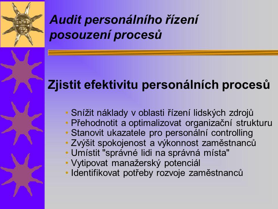 Audit personálního řízení posouzení procesů Zjistit efektivitu personálních procesů Snížit náklady v oblasti řízení lidských zdrojů Přehodnotit a optimalizovat organizační strukturu Stanovit ukazatele pro personální controlling Zvýšit spokojenost a výkonnost zaměstnanců Umístit správné lidi na správná místa Vytipovat manažerský potenciál Identifikovat potřeby rozvoje zaměstnanců