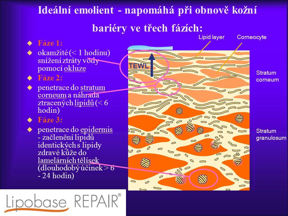 Ideální emolient - napomáhá při obnově kožní bariéry ve třech fázích: TEWL CorneocyteLipid layer Stratum corneum Stratum granulosum  Fáze 1:  okamžité (< 1 hodinu) snížení ztráty vody pomocí okluze  Fáze 2:  penetrace do stratum corneum a náhrada ztracených lipidů (< 6 hodin)  Fáze 3:  penetrace do epidermis - začlenění lipidů identických s lipidy zdravé kůže do lamelárních tělísek (dlouhodobý účinek > 6 - 24 hodin)
