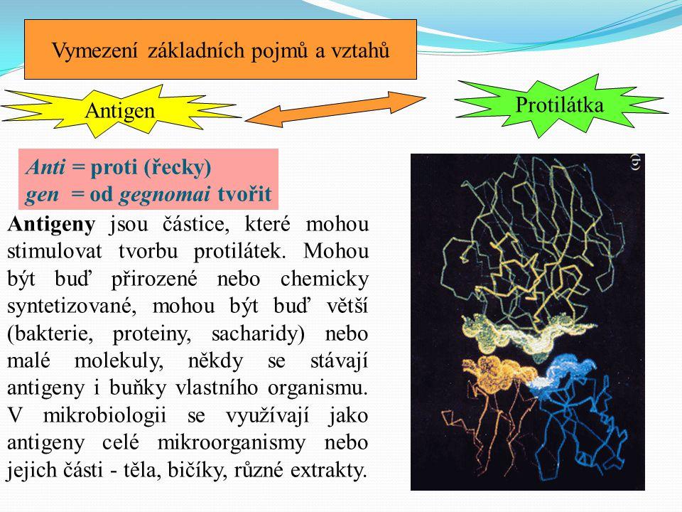Vymezení základních pojmů a vztahů Antigeny jsou částice, které mohou stimulovat tvorbu protilátek. Mohou být buď přirozené nebo chemicky syntetizovan