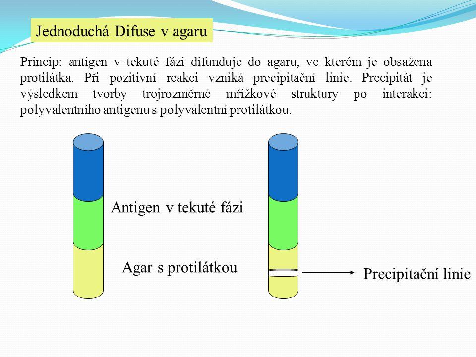 Jednoduchá Difuse v agaru Princip: antigen v tekuté fázi difunduje do agaru, ve kterém je obsažena protilátka. Při pozitivní reakci vzniká precipitačn