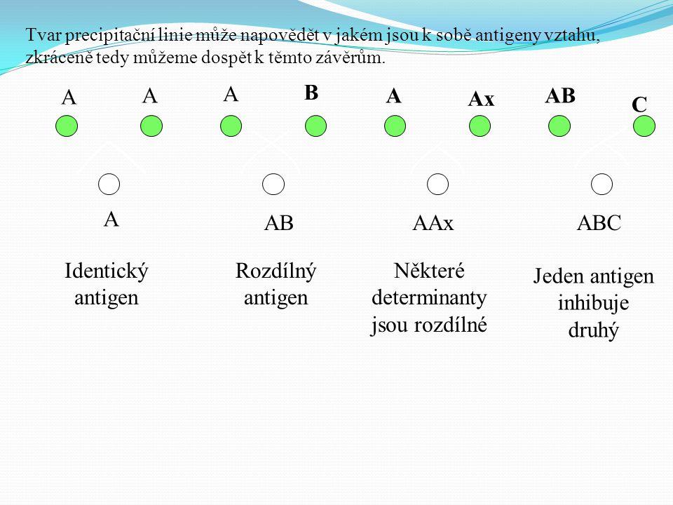Tvar precipitační linie může napovědět v jakém jsou k sobě antigeny vztahu, zkráceně tedy můžeme dospět k těmto závěrům. A A A B A Ax AB C A AAxABC Id