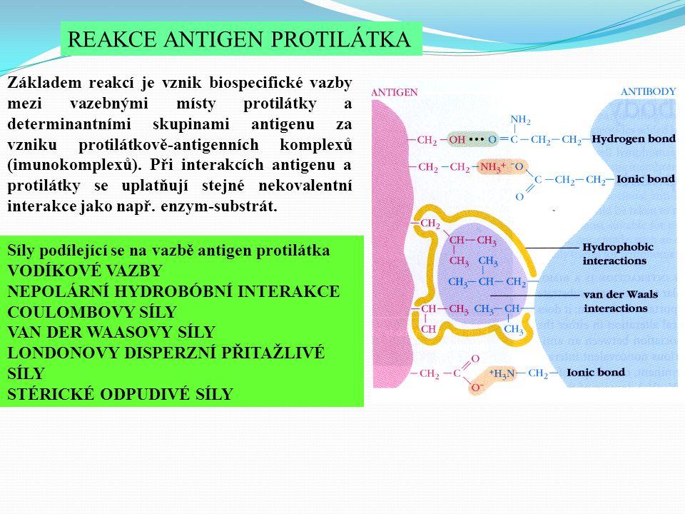 REAKCE ANTIGEN PROTILÁTKA Základem reakcí je vznik biospecifické vazby mezi vazebnými místy protilátky a determinantními skupinami antigenu za vzniku