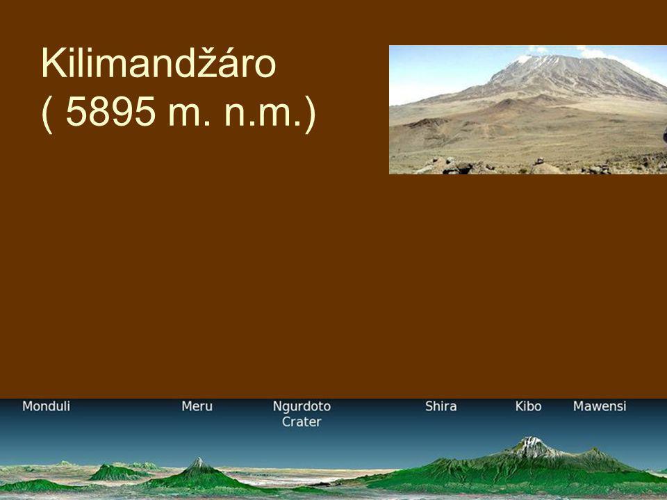 Kilimandžáro ( 5895 m. n.m.)