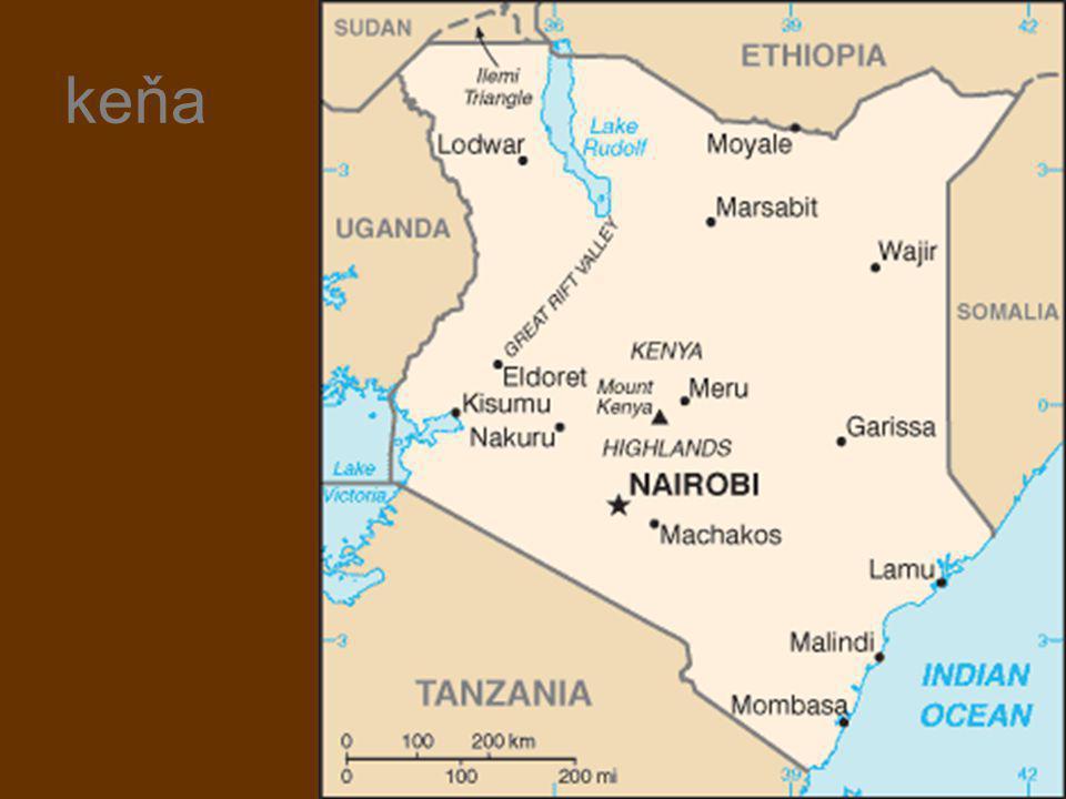 Keňa -34 000 000 obyvatel -22% Kikuyu, 14% Luhya, 13% Luo, 12% Kalenjin, 11% Kamba, 6%Kisii, 6% Meru, nomádské kmeny Masajové, Turkani -průměrná délka života 18 let -50% pod hranicí chudoby -45% protestanti, 33% katolíci -1,2 milionu HIV pozitivních