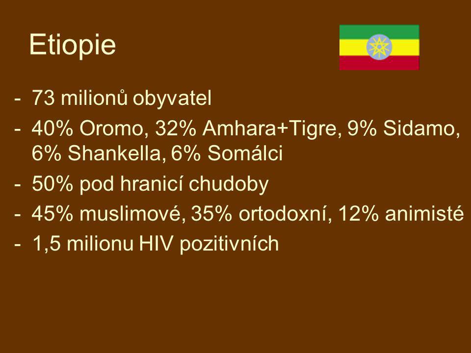 Etiopie -73 milionů obyvatel -40% Oromo, 32% Amhara+Tigre, 9% Sidamo, 6% Shankella, 6% Somálci -50% pod hranicí chudoby -45% muslimové, 35% ortodoxní,