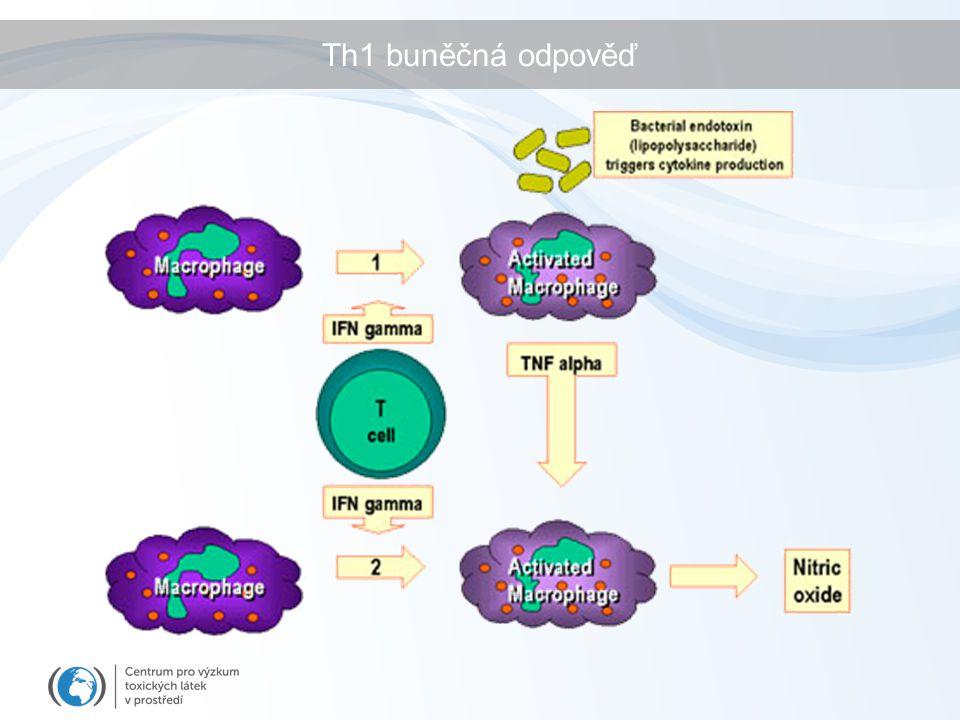 Th1 buněčná odpověď