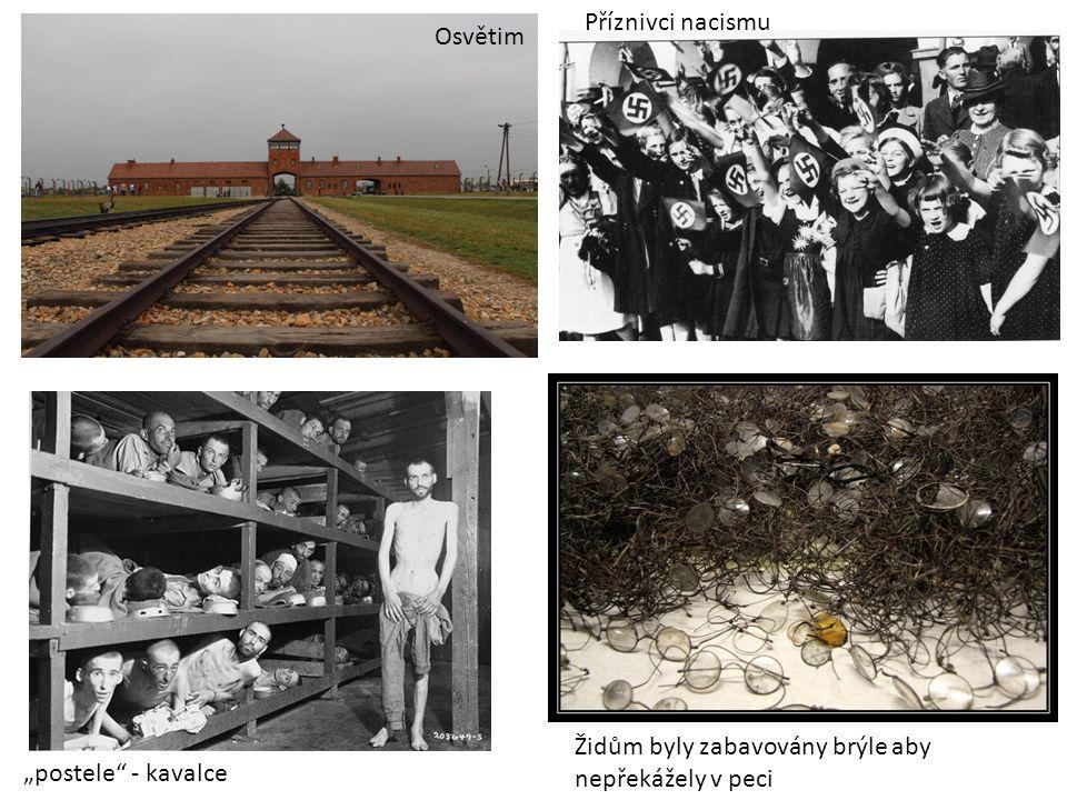 """Osvětim Příznivci nacismu """"postele - kavalce Židům byly zabavovány brýle aby nepřekážely v peci"""