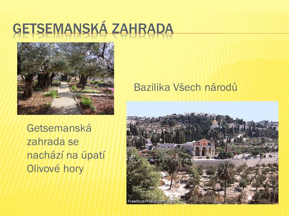 Getsemanská zahrada se nachází na úpatí Olivové hory Bazilika Všech národů