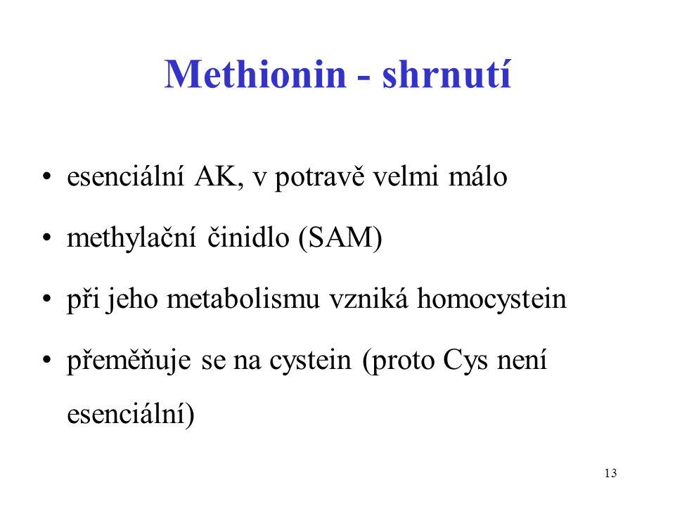 13 Methionin - shrnutí esenciální AK, v potravě velmi málo methylační činidlo (SAM) při jeho metabolismu vzniká homocystein přeměňuje se na cystein (proto Cys není esenciální)