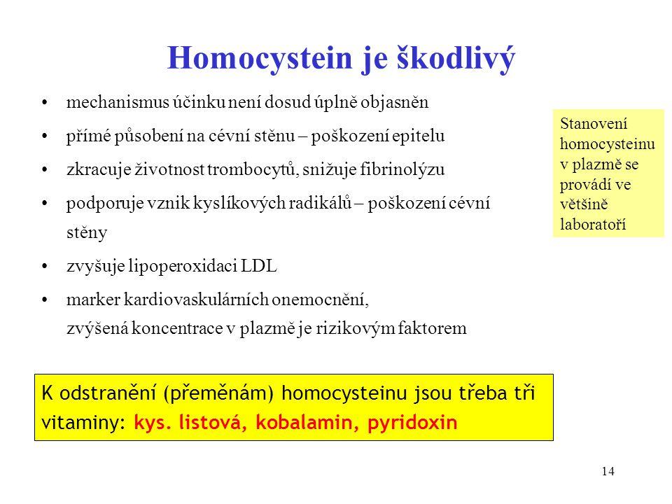 14 Homocystein je škodlivý mechanismus účinku není dosud úplně objasněn přímé působení na cévní stěnu – poškození epitelu zkracuje životnost trombocyt