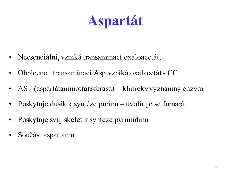 16 Neesenciální, vzniká transaminací oxaloacetátu Obráceně : transaminací Asp vzniká oxalacetát - CC AST (aspartátaminotransferasa) – klinicky významný enzym Poskytuje dusík k syntéze purinů – uvolňuje se fumarát Poskytuje svůj skelet k syntéze pyrimidinů Součást aspartamu Aspartát