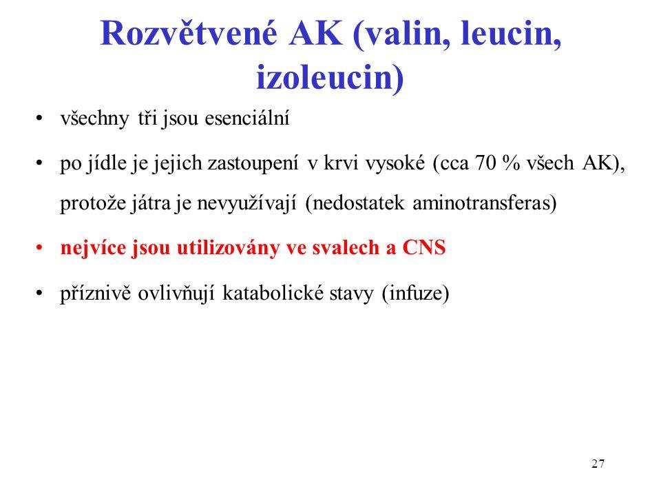 27 Rozvětvené AK (valin, leucin, izoleucin) všechny tři jsou esenciální po jídle je jejich zastoupení v krvi vysoké (cca 70 % všech AK), protože játra