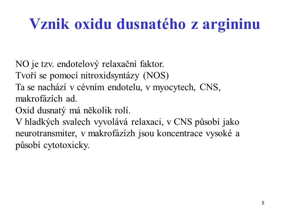 8 Vznik oxidu dusnatého z argininu NO je tzv. endotelový relaxační faktor. Tvoří se pomocí nitroxidsyntázy (NOS) Ta se nachází v cévním endotelu, v my