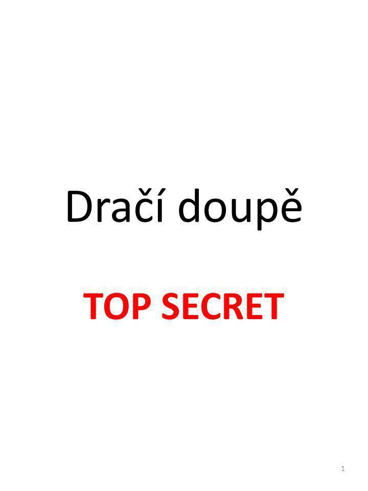 Dračí doupě TOP SECRET 1