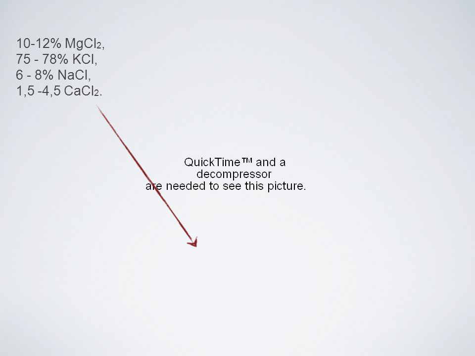 10-12% MgCl 2, 75 - 78% KCl, 6 - 8% NaCl, 1,5 -4,5 CaCl 2.