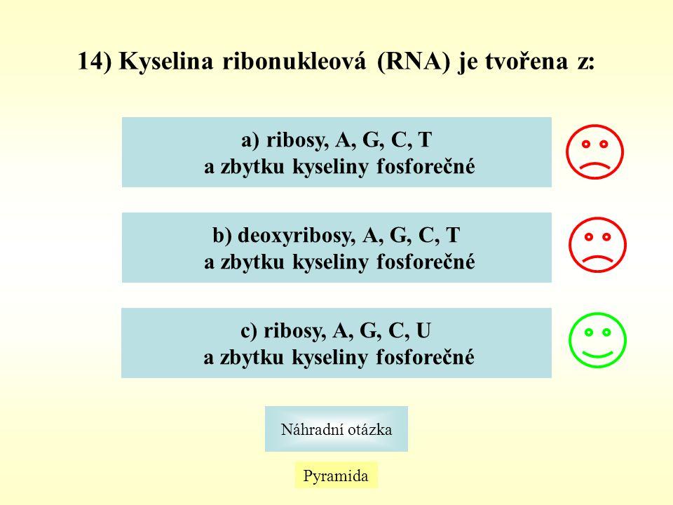 Pyramida Náhradní otázka 14) Kyselina ribonukleová (RNA) je tvořena z: a)ribosy, A, G, C, Tribosy, A, G, C, T a zbytku kyseliny fosforečné b) deoxyrib