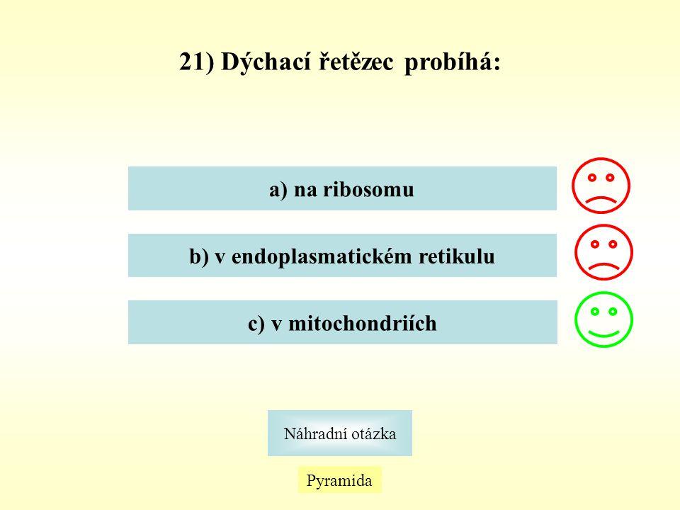 Pyramida Náhradní otázka 21) Dýchací řetězec probíhá: a) na ribosomu b) v endoplasmatickém retikulu c) v mitochondriích