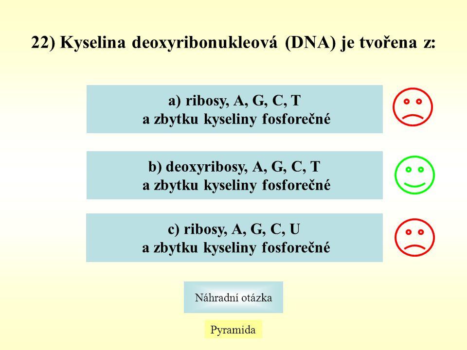 22) Kyselina deoxyribonukleová (DNA) je tvořena z: Pyramida Náhradní otázka a)ribosy, A, G, C, Tribosy, A, G, C, T a zbytku kyseliny fosforečné b) deo