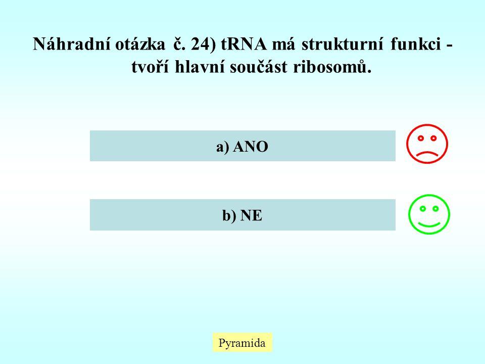 Náhradní otázka č. 24) tRNA má strukturní funkci - tvoří hlavní součást ribosomů. a) ANO b) NE Pyramida