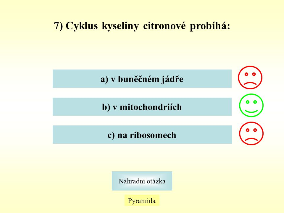 Pyramida Náhradní otázka 7) Cyklus kyseliny citronové probíhá: a) v buněčném jádře b) v mitochondriích c) na ribosomech