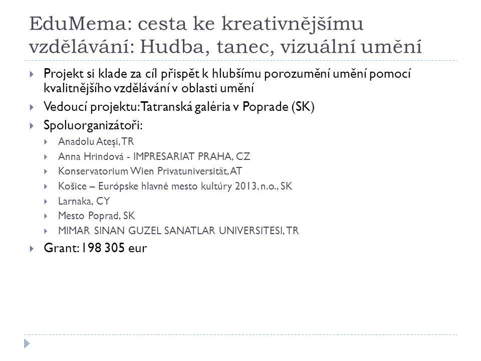 EduMema: cesta ke kreativnějšímu vzdělávání: Hudba, tanec, vizuální umění  Projekt si klade za cíl přispět k hlubšímu porozumění umění pomocí kvalitnějšího vzdělávání v oblasti umění  Vedoucí projektu: Tatranská galéria v Poprade (SK)  Spoluorganizátoři:  Anadolu Ateşi, TR  Anna Hrindová - IMPRESARIAT PRAHA, CZ  Konservatorium Wien Privatuniversität, AT  Košice – Európske hlavné mesto kultúry 2013, n.o., SK  Larnaka, CY  Mesto Poprad, SK  MIMAR SINAN GUZEL SANATLAR UNIVERSITESI, TR  Grant: 198 305 eur