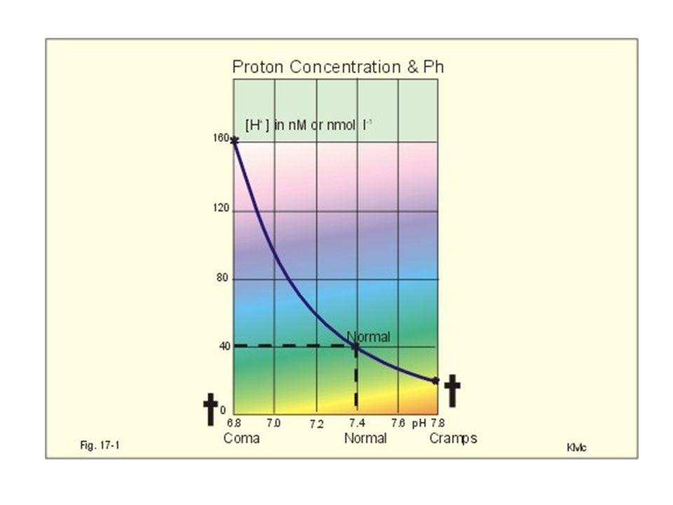 Alkalóza METABOLICKÁ RESPIRAČNÍ HCO 3 - V A infúze hypoxie (dehydratace) umělá ventilace psychogenní H + hypochloremická hyperaldosteronismus (ICT pH) Bartterův sy