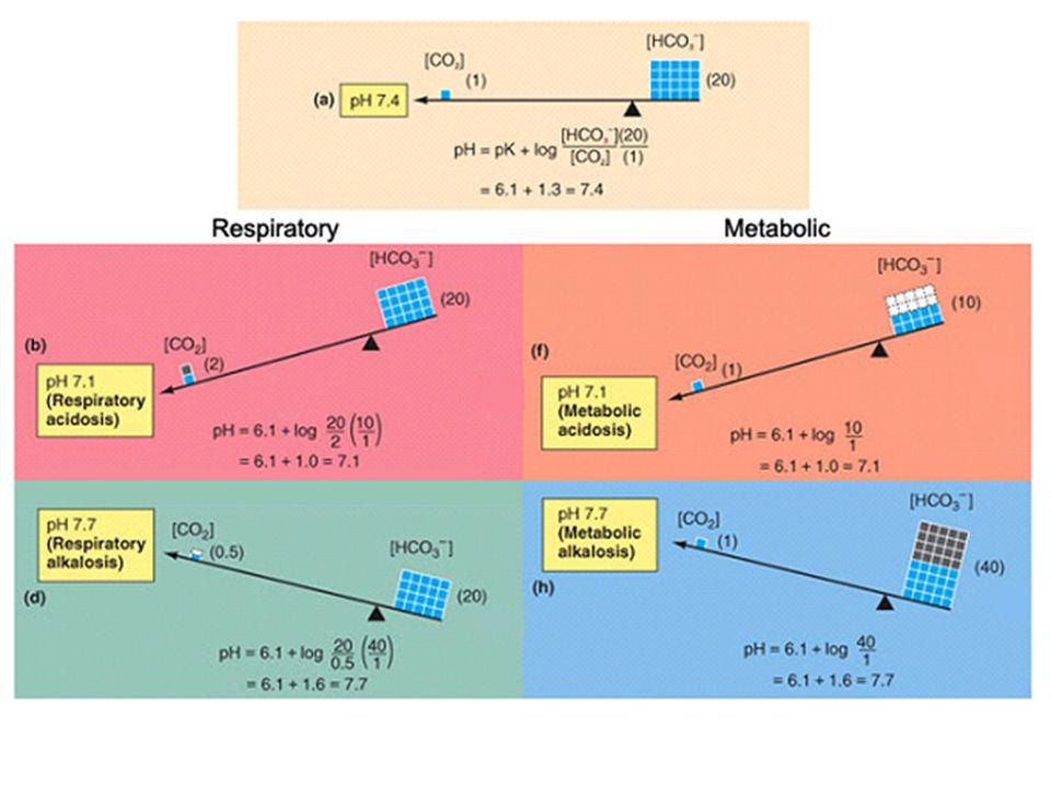Kompenzace respirační acidózy V A chronická akutní P a CO 2 renální exkrece H+ pH renální reabsorpce HCO 3 - vstup H+ do bb HCO 3 - v plazmě