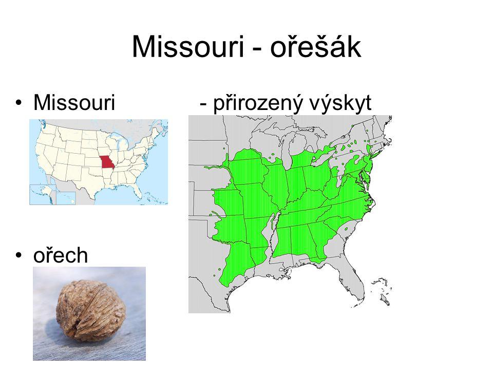 Missouri - ořešák Missouri - přirozený výskyt ořešáku ořech