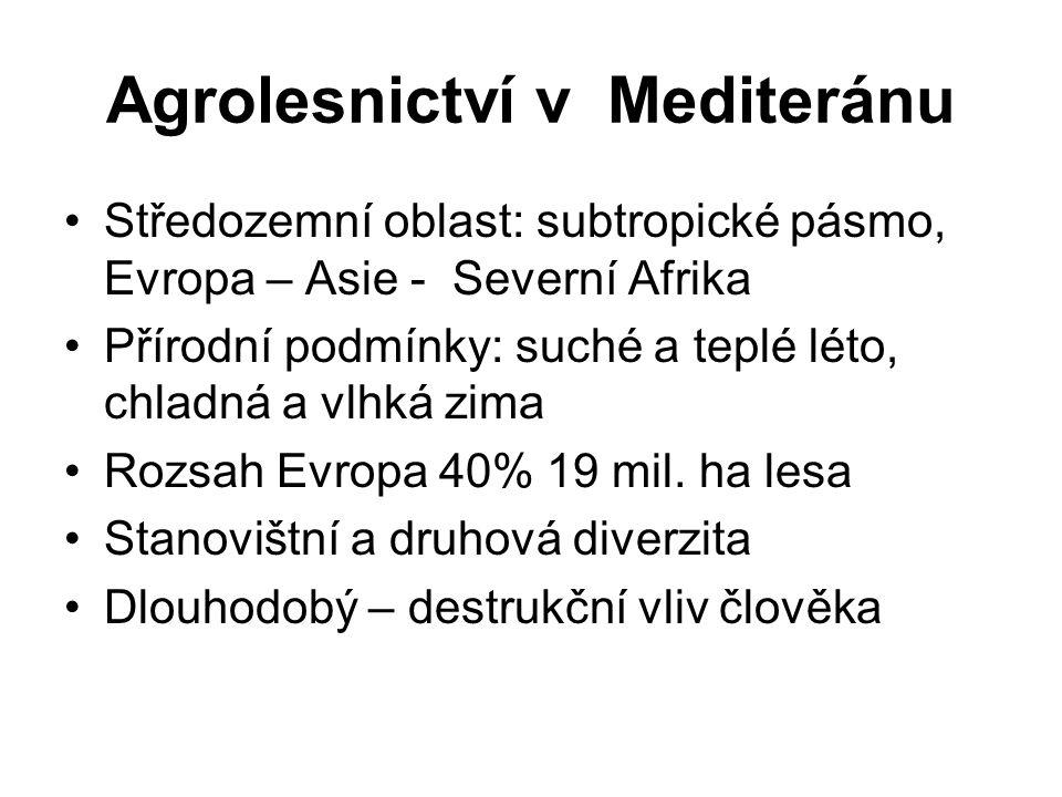 Agrolesnictví v Mediteránu Středozemní oblast: subtropické pásmo, Evropa – Asie - Severní Afrika Přírodní podmínky: suché a teplé léto, chladná a vlhk