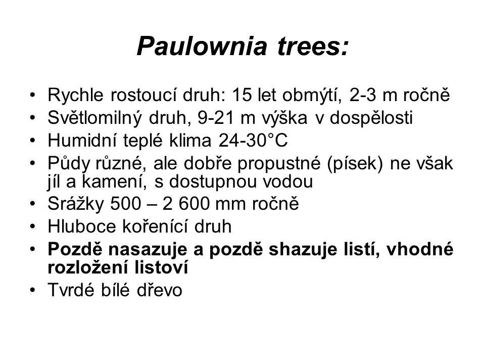 Paulownia trees: Rychle rostoucí druh: 15 let obmýtí, 2-3 m ročně Světlomilný druh, 9-21 m výška v dospělosti Humidní teplé klima 24-30°C Půdy různé,