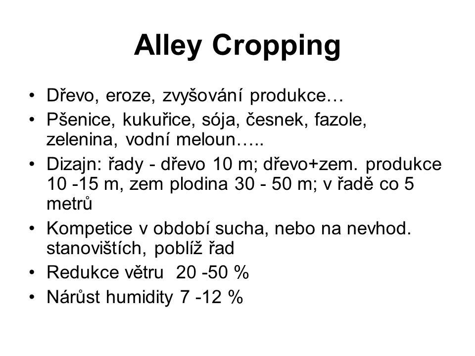 Alley Cropping Dřevo, eroze, zvyšování produkce… Pšenice, kukuřice, sója, česnek, fazole, zelenina, vodní meloun….. Dizajn: řady - dřevo 10 m; dřevo+z
