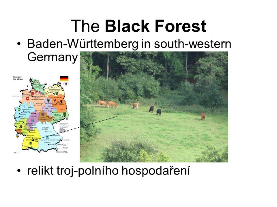 The Black Forest Baden-Württemberg in south-western Germany relikt troj-polního hospodaření