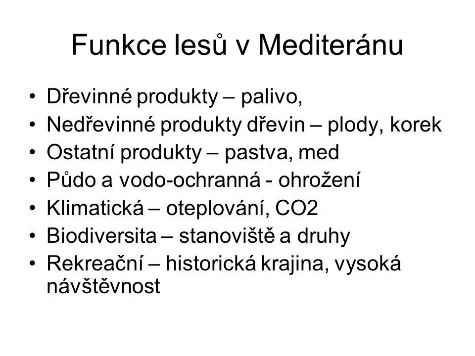 Funkce lesů v Mediteránu Dřevinné produkty – palivo, Nedřevinné produkty dřevin – plody, korek Ostatní produkty – pastva, med Půdo a vodo-ochranná - o