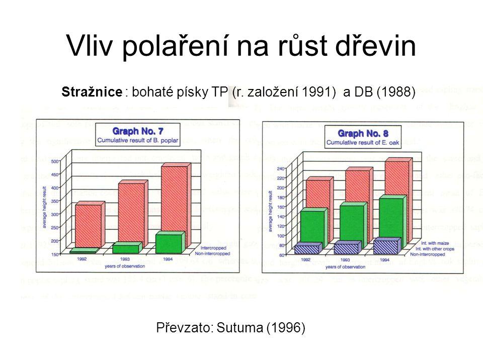 Vliv polaření na růst dřevin Převzato: Sutuma (1996) Stražnice : bohaté písky TP (r. založení 1991) a DB (1988)