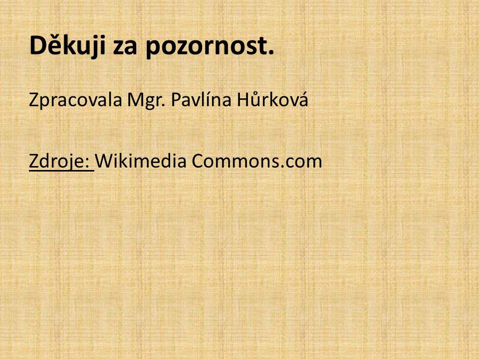 Děkuji za pozornost. Zpracovala Mgr. Pavlína Hůrková Zdroje: Wikimedia Commons.com