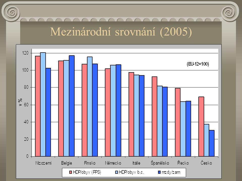 Mezinárodní srovnání (2005)