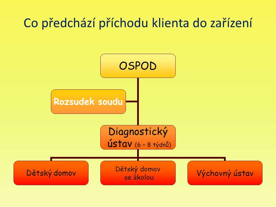Co předchází příchodu klienta do zařízení OSPOD Diagnostický ústav (6 – 8 týdnů) Dětský domov se školou Výchovný ústav Rozsudek soudu