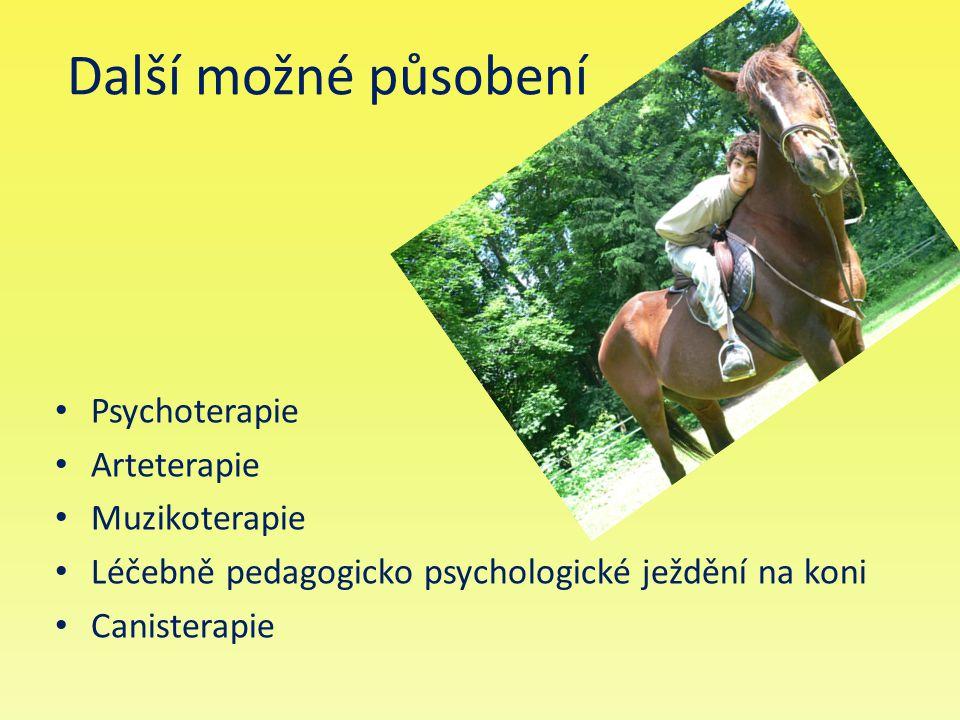 Další možné působení Psychoterapie Arteterapie Muzikoterapie Léčebně pedagogicko psychologické ježdění na koni Canisterapie